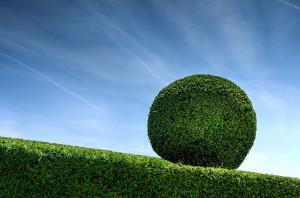 Sommerfeld Grünanlagen Gartenpflege & Heckenschnitt