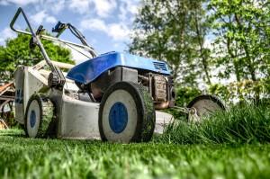 Sommerfeld Grünanlagen Gartenpflege, Rasen mähen, Mäharbeiten